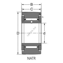 NATR 20