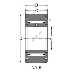 NATR 6