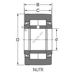 NUTR 45
