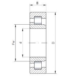 Чертеж-схема подшипника NJ303