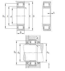 Чертеж-схема подшипника 06NU0721VHC3 KOYO