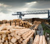 Подшипники для деревообрабатывающей промышленности